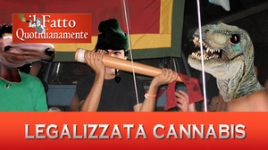fq-legalizzata-cannabis