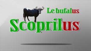 scoprilus - le bufale