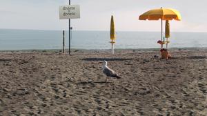 spiaggia-3
