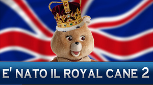tg-test-e-nato-il-royal-cane-2-parodia-royal-baby